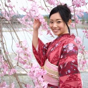 大島紬、結城紬の卸売のイメージ